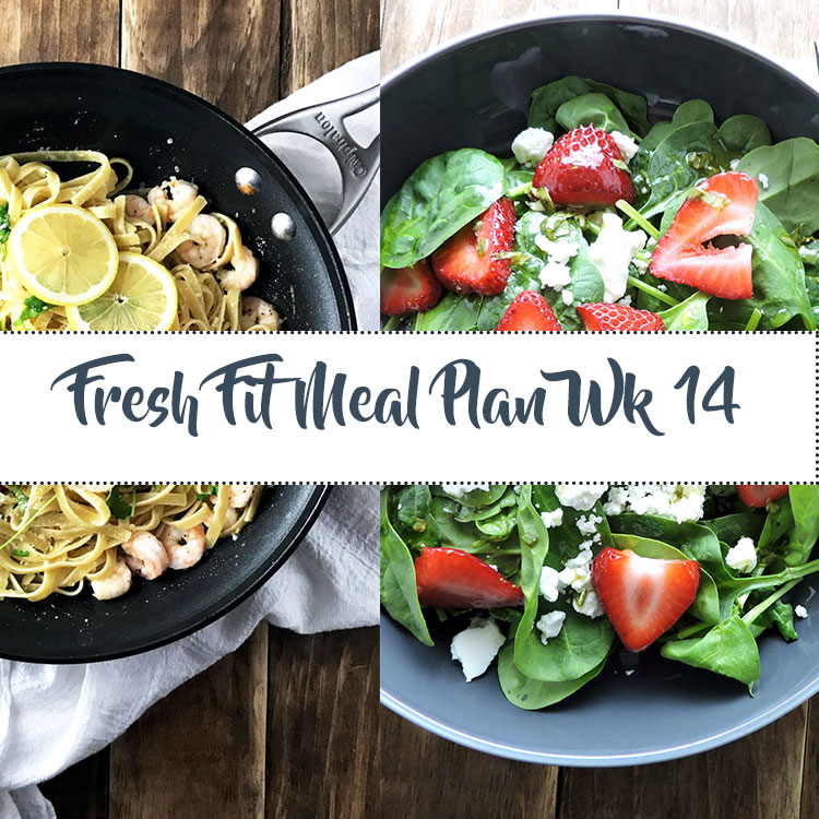 Fresh Fit Meal Plan Guide Week 14